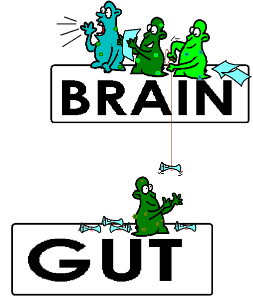 gut-bacteria-controlling-brain.png
